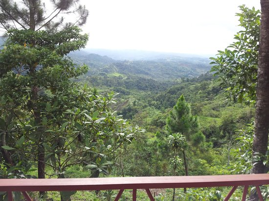Casa Botania Bed & Breakfast: Breathtaking balcony views