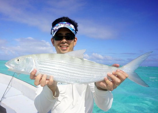 Bonefish - E2's Way: 8lb bonefish caught on a plastic lure