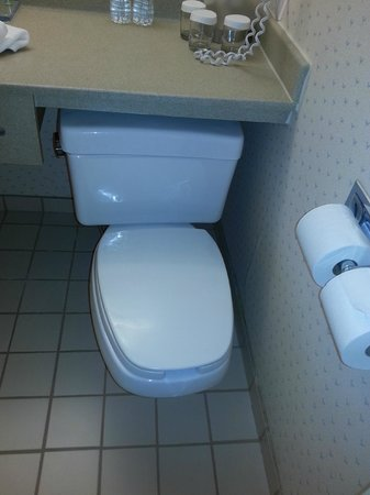 Windsor Riverside Inn Toilet Too Close To Wall And Under Counter