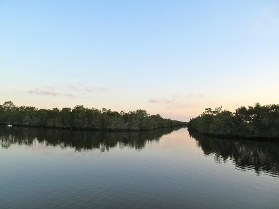 Collier Seminole State Park: Canoeing