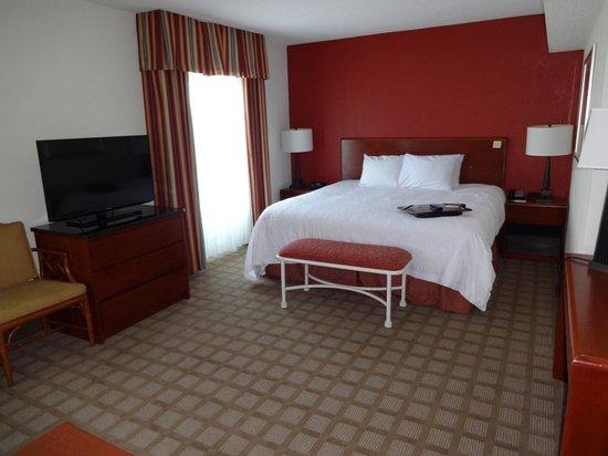 Hampton Inn Myrtle Beach - Broadway @ The Beach: Hotel Room
