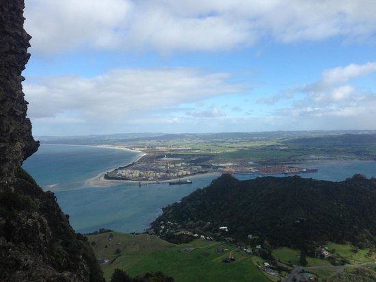The Guesthouse at Taiharuru Farms Lodge: View Mt Manaia (403m)