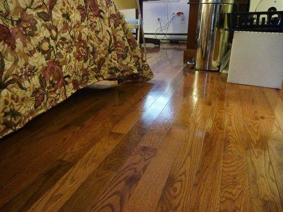 Oceanside Motel: floor