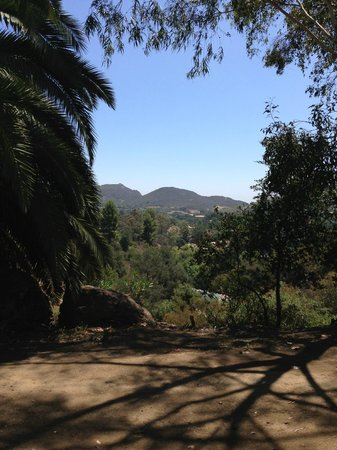 Malibu Family Wines: View at Malibu Wines