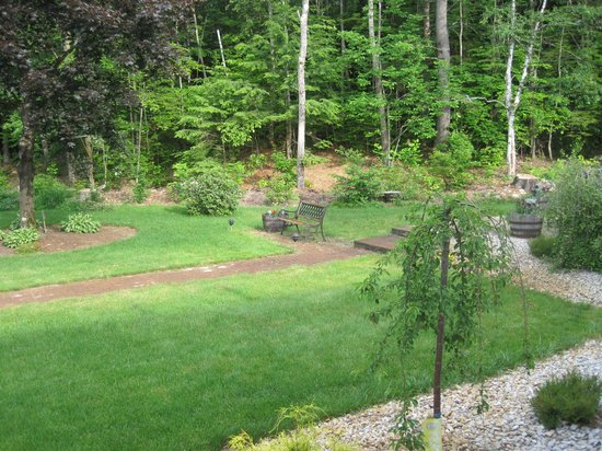 Golden Apple Inn: Back yard 1