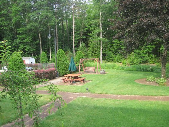 Golden Apple Inn: Back yard 2