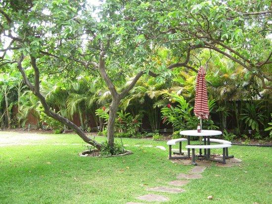Hale 'Nalo Beach Rentals: Hale Nalo grounds