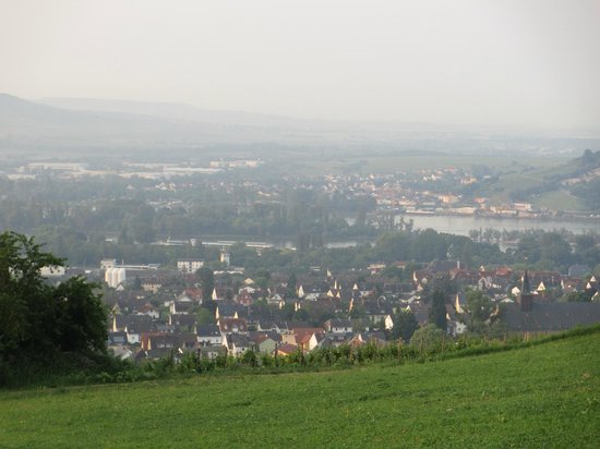 Benedictine Abbey of St. Hildegard : View of the Rhine from the Abbey