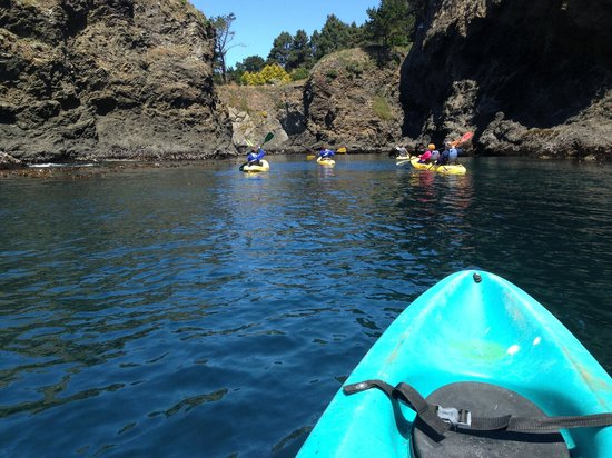Kayak Mendocino Adventure  June 2013