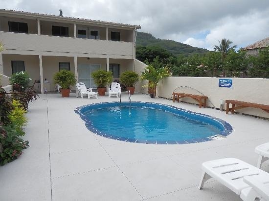 Coral Sands Apartments : The Pool
