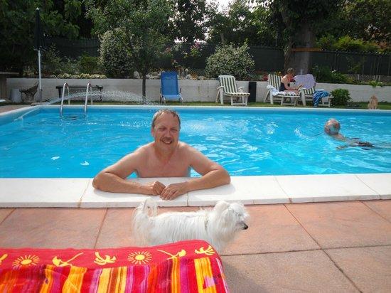 B&B BBDesenzano: Prachtig zwembad