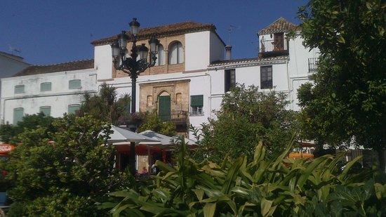 Ayuntamiento City Hall : PLAZA DE LOS NARANJOS