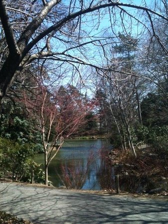 Brooklyn botanic garden all you need to know before you - Hotels near brooklyn botanical garden ...