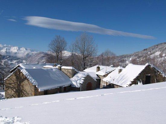 Il Borgo dei Celti Agriturismo: Il Borgo