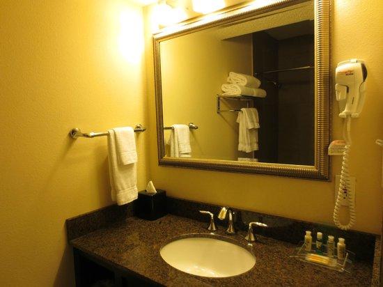 Holiday Inn Metairie New Orleans Airport: bathroom