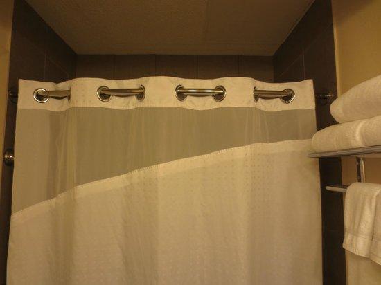 Holiday Inn Metairie New Orleans Airport: Bathroom shower curtain