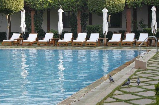 Trident, Agra: Stop wishing ... do it (-;