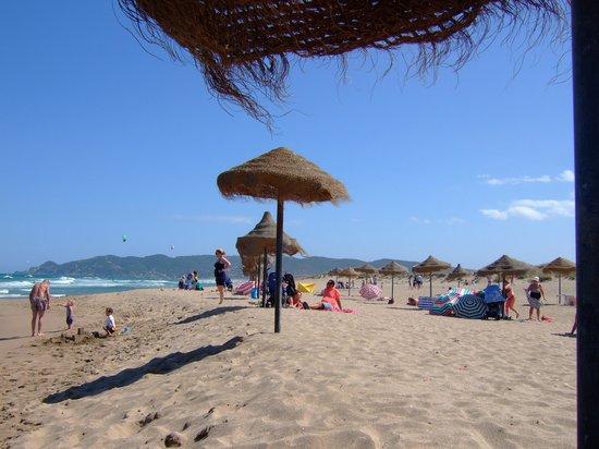 El Delfin Verde : Beach at El Delphin Verde