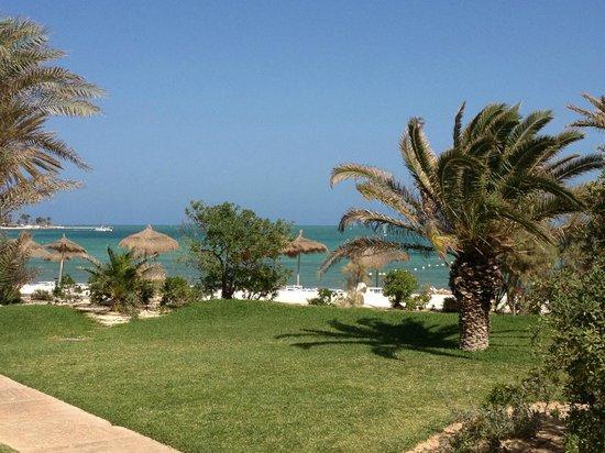 calypso beach picture of club med djerba la douce. Black Bedroom Furniture Sets. Home Design Ideas