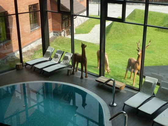 Hotel Zubrowka: spa, pool