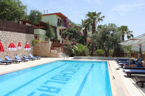 Patara Delfin Hotel: Delfin Hotel - pool view