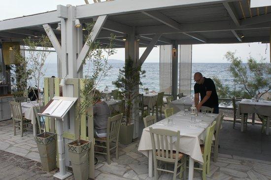 Afroditi Venus Beach Hotel & Spa : Hotel restaurant