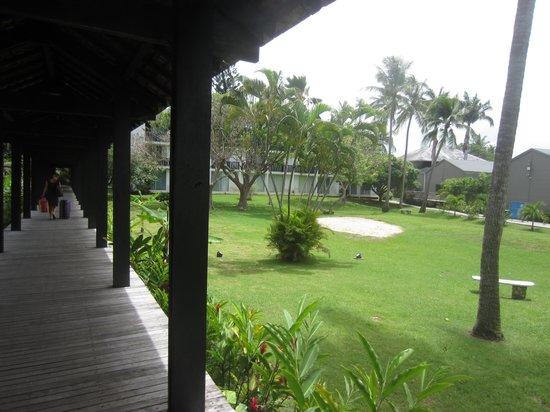 La Creole Beach Hotel: Le jardin