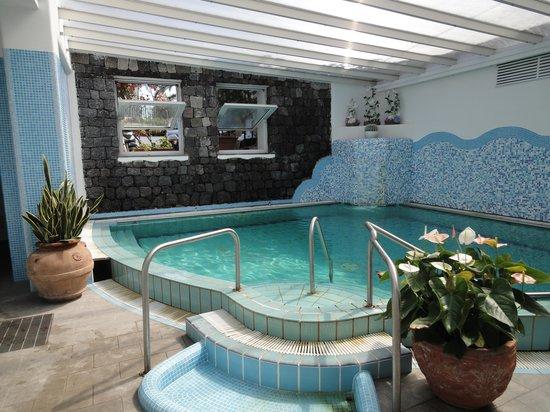 Hotel Floridiana Terme: Piscina interna