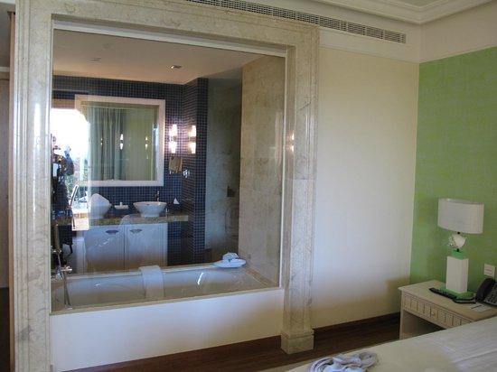 Cascade Wellness & Lifestyle Resort: Baño desde habitación