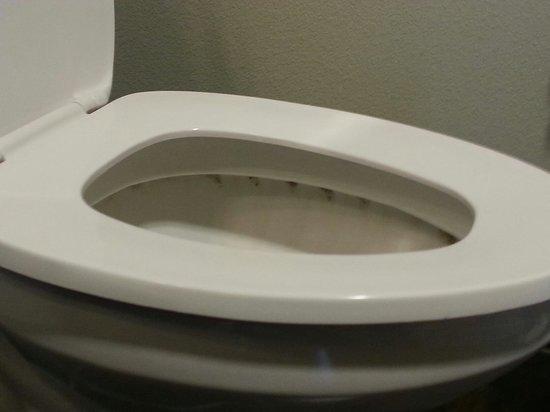 Hawthorn Suites by Wyndham Lubbock: Toilet..disgusting!