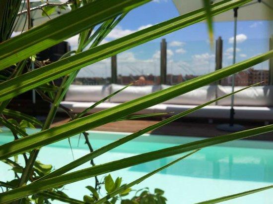 Médina Loft : Piscine sur Terrasse