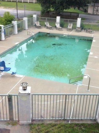 Signature Boutique Hotel: the pool by room 200 window in hall , don't look appealing , ill pass it looks disgusting