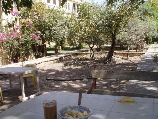 Lake View Paying Guest House : le jardin