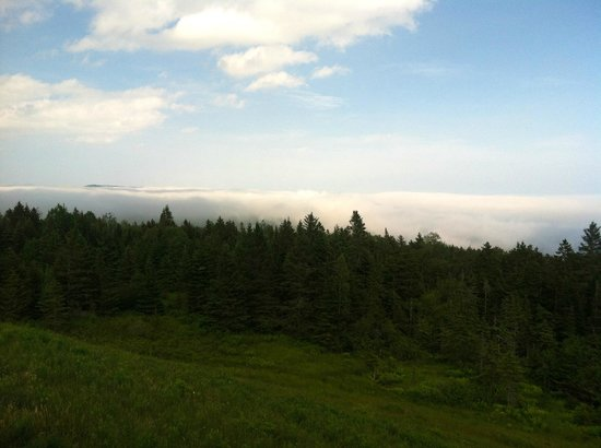 Fundy National Park: View from Hill