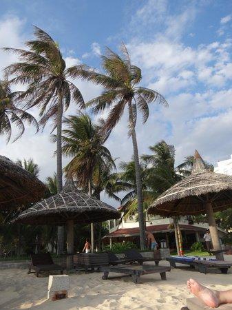 The Beach Resort : Parc