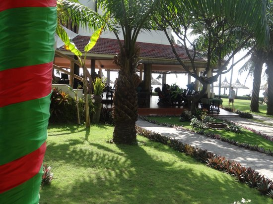 The Beach Resort : Bar