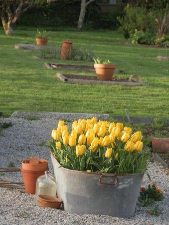 Trevoole Farm: Beautiful gardens