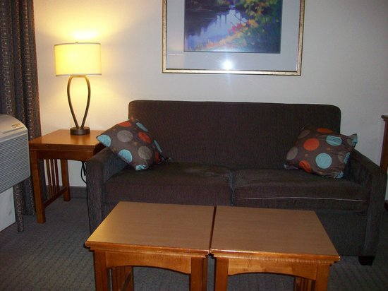 Staybridge Suites Anaheim - Resort Area: Sofa bed