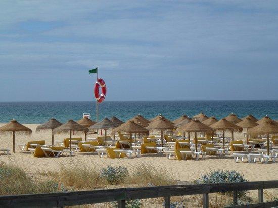 Falesia  Beach: The beach