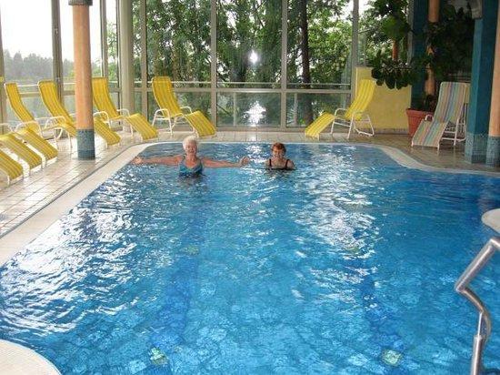 Eder Wohlfühl Hotel: Panorama Schwimmbad