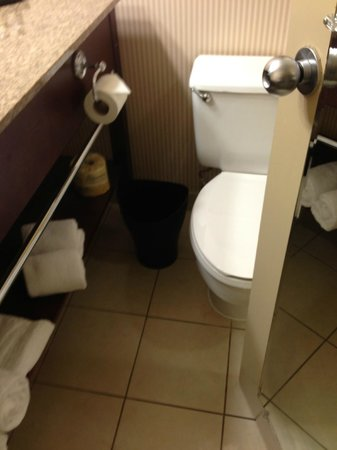 "Sheraton Atlanta Airport Hotel: there were maybe 3"" between the door and the toilet.  How do you get in?"