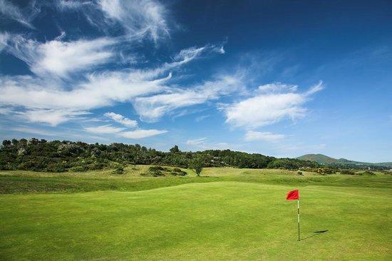 Leven Thistle Golf Club: 15th Green