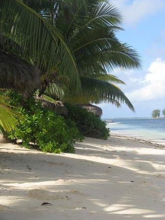 La Digue Island Lodge: la spiaggia dell'hotel