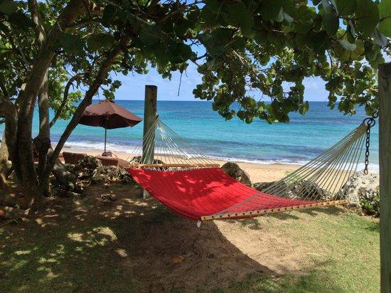 Villa Montana Beach Resort: The View