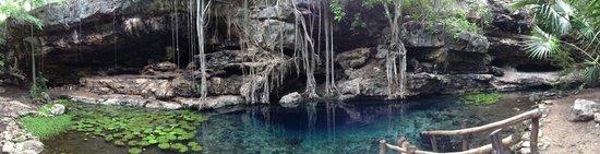 Adventures Mexico Day Tours: Cenote San Antonio Milix