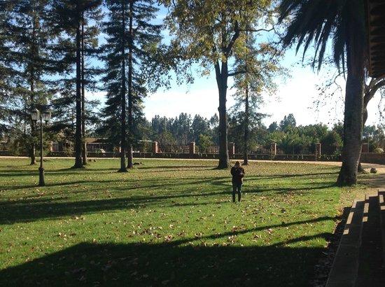 Las Majadas Casona de Campo: Jardines