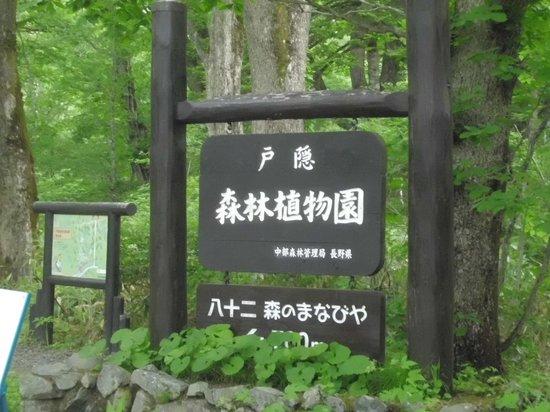 Togakushi Forest Botanical Garden