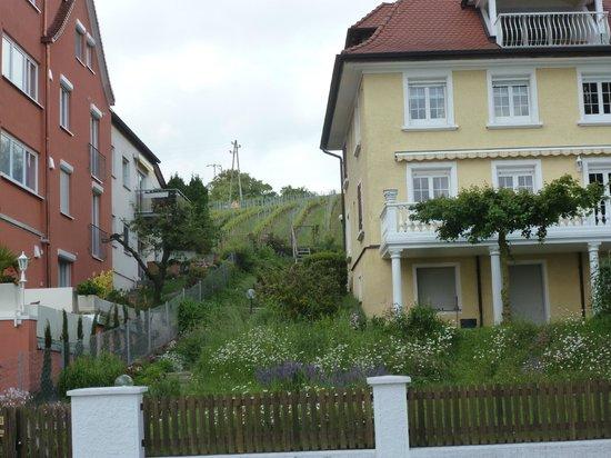 Hotel zum Schiff: local area