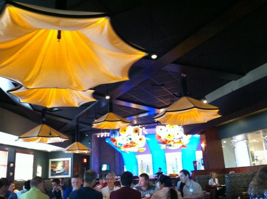 Kona Grill - Eden Prairie: Beautiful glass sculptures on the ceiling of Kona Grill