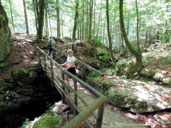 3 Seen Tour: Woodland walk from lake to lake